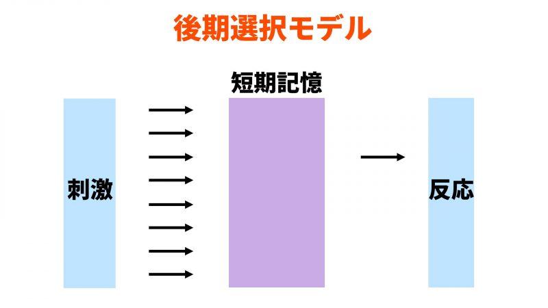 後期選択モデル